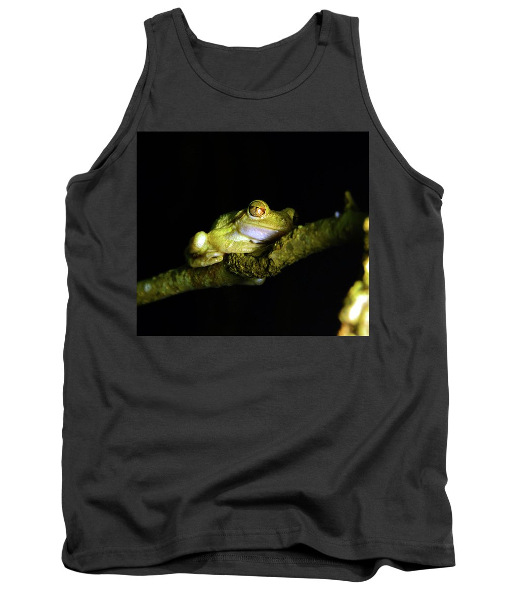 Frog Tank Top featuring the photograph Frog Night Feeding by David Lee Thompson