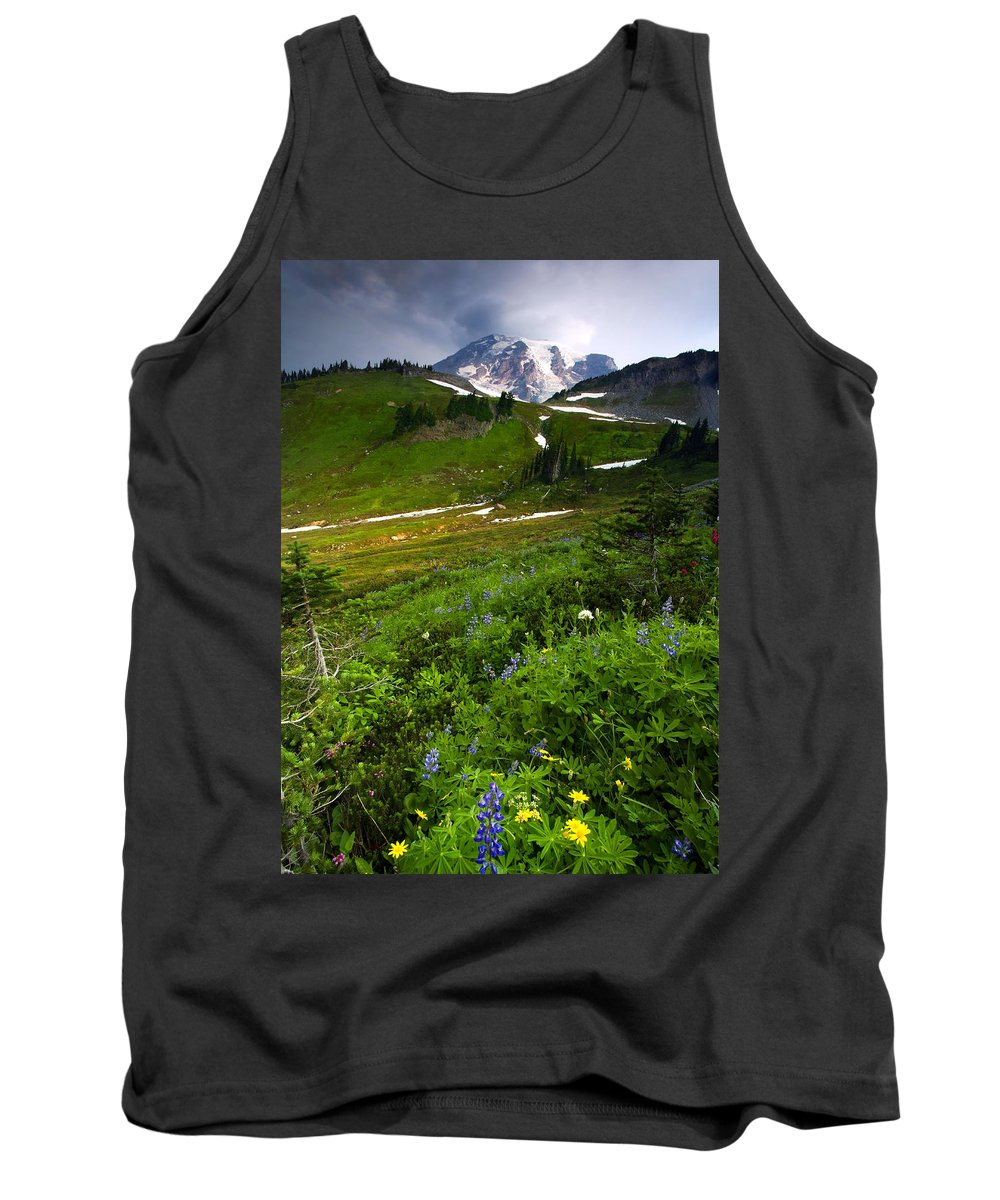 Rainier Tank Top featuring the photograph From The Top by Mike Dawson