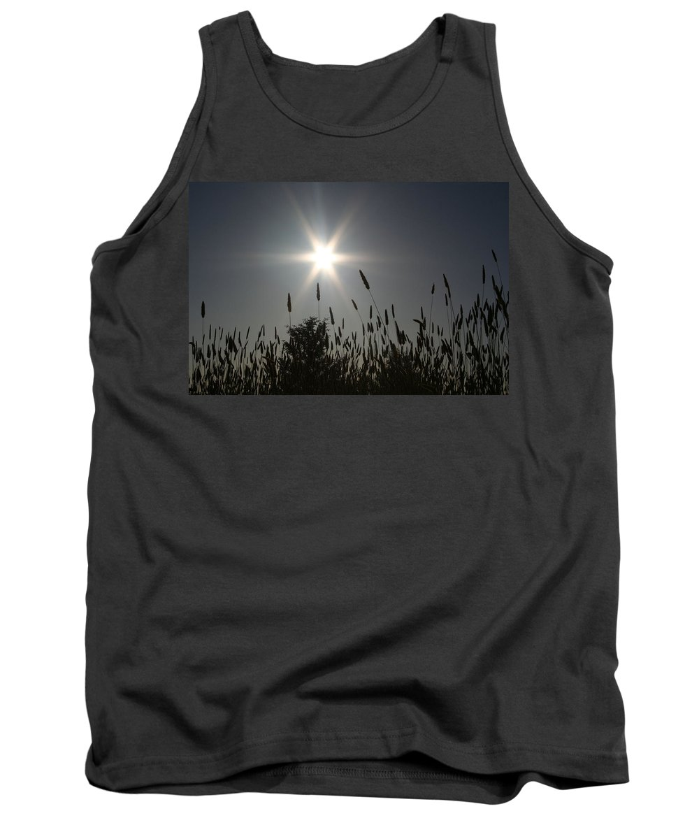Sun Tank Top featuring the photograph From Where I Sit by Holly Ethan