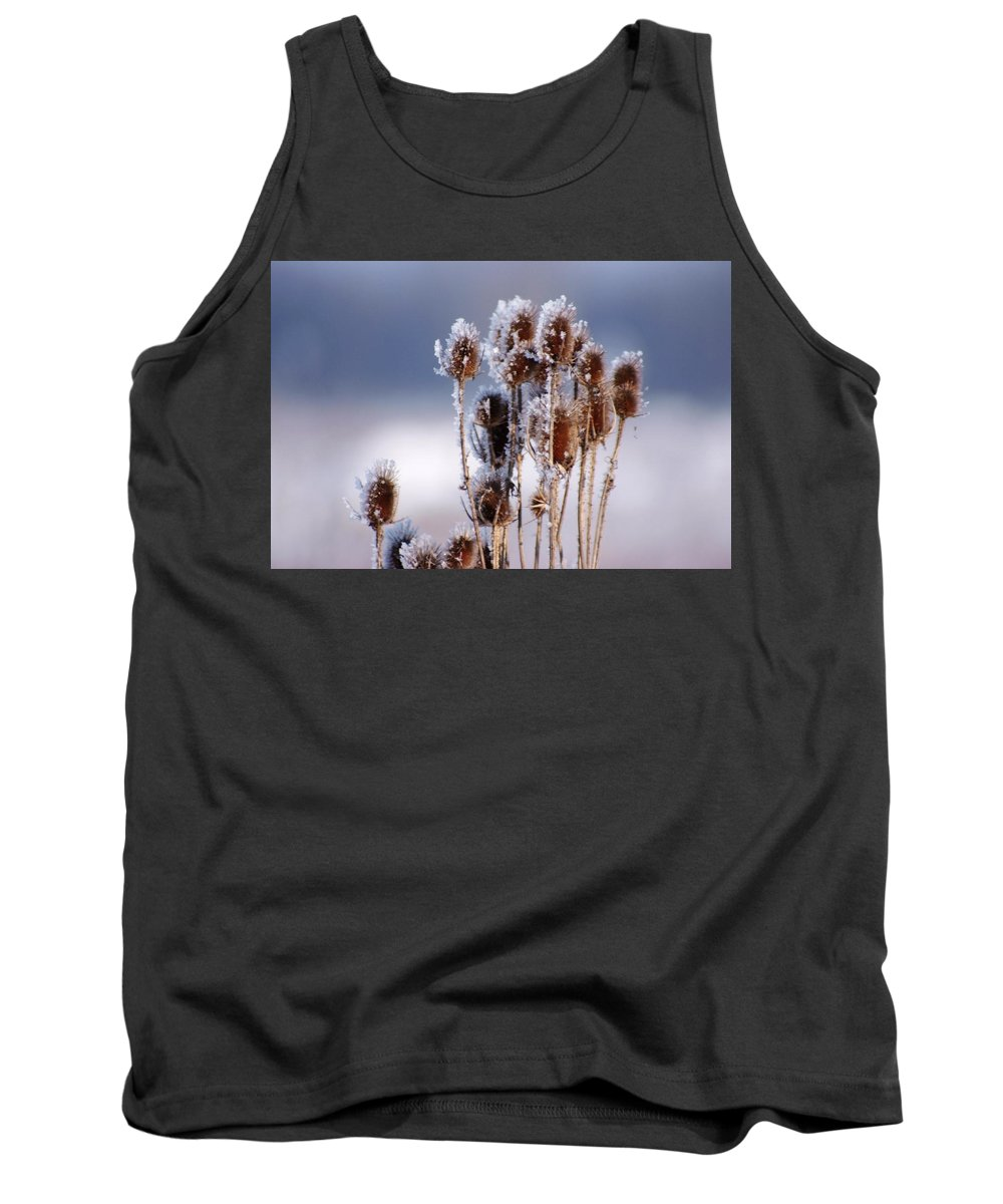 Frost Tank Top featuring the photograph Frost In The Morning by Cliff Norton