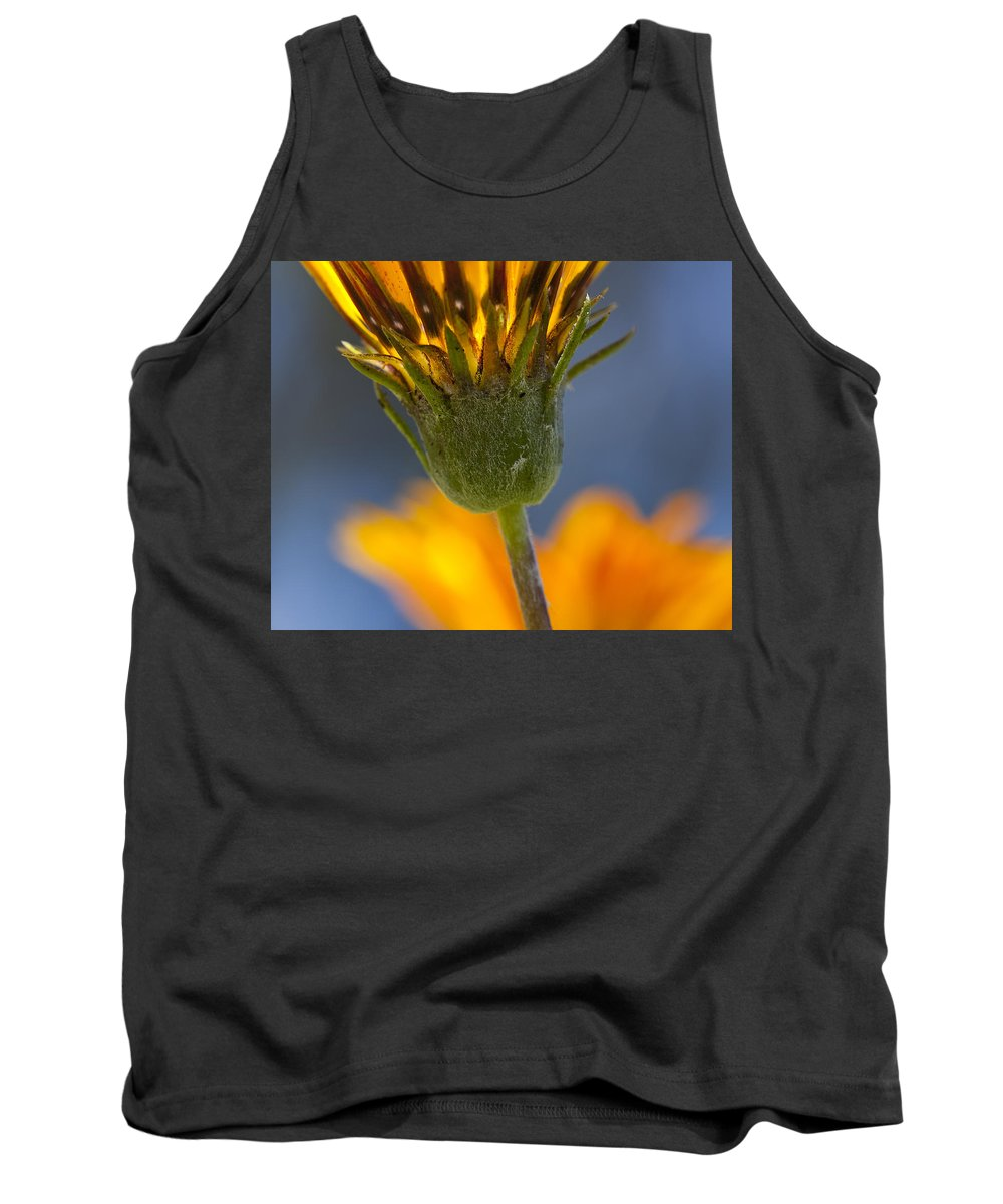 Flowers Tank Top featuring the photograph Gerbera Daisy by Kelley King