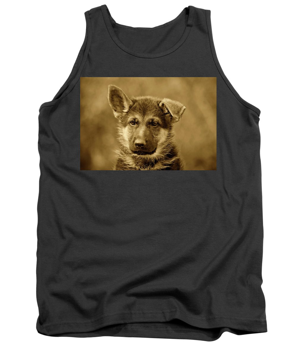 German Shepherd Tank Top featuring the photograph German Shepherd Puppy In Sepia by Sandy Keeton
