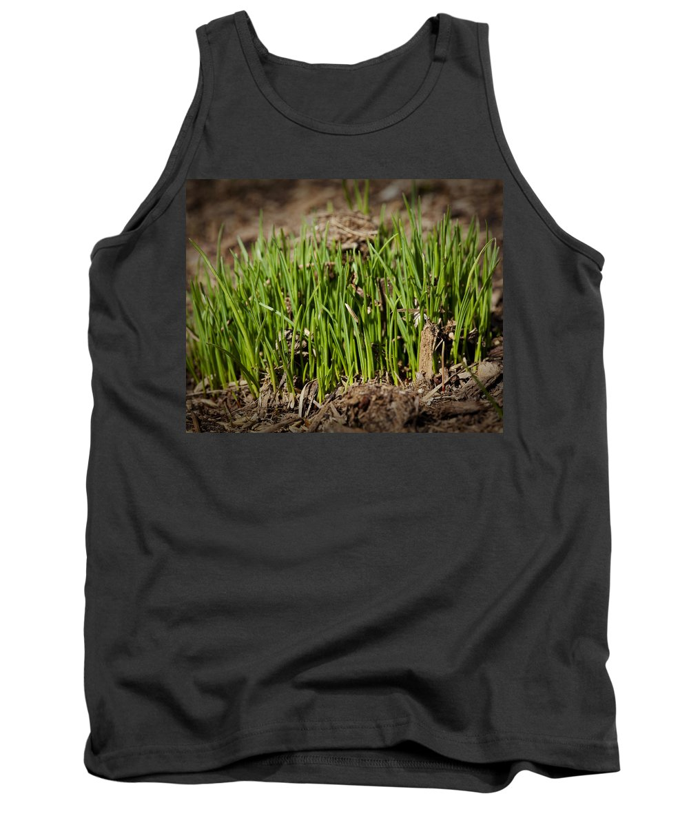 Grass Tank Top featuring the photograph Germination by Kelley King