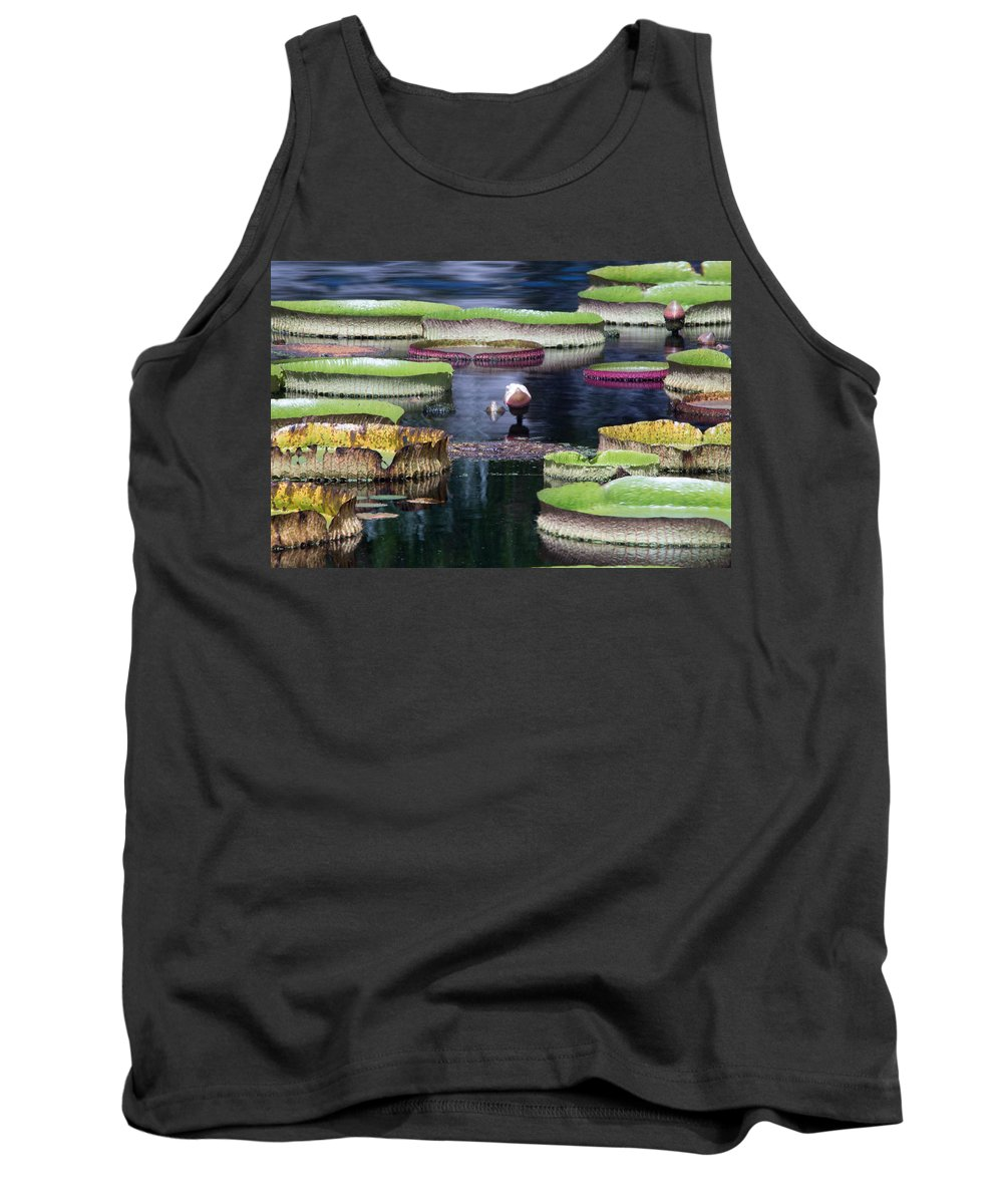 Lily Pad Tank Top featuring the photograph Giant Lily Pads by J Darrell Hutto