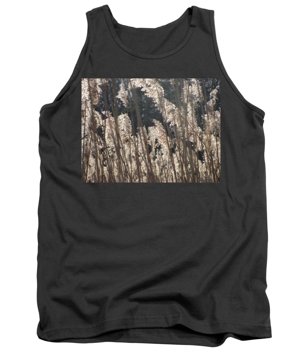 Golden Brown Grass Photographs Canvas Prints Reeds Nuetral Colors Landscape Winter Wetland Images Winter Marsh Photo Prints Maryland Cheasapeake Tributary Tank Top featuring the photograph Golden Brown by Joshua Bales
