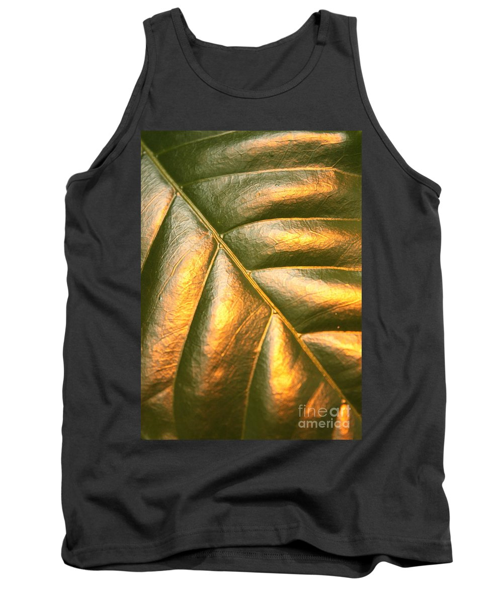 Gold Tank Top featuring the photograph Golden Leaf by Carol Groenen
