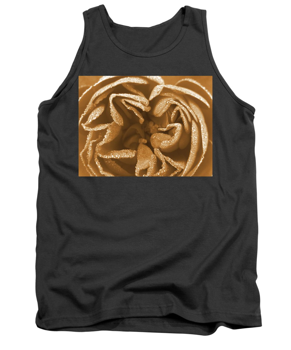 Rose Tank Top featuring the photograph Golden Rose by Amy Fose