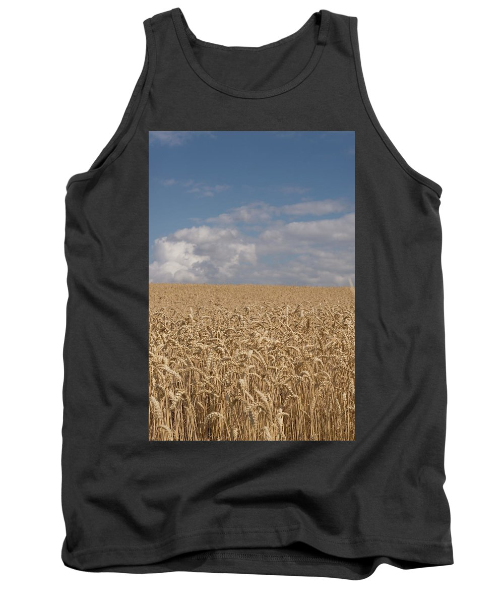 Backgrounds Tank Top featuring the photograph Golden Wheat Field by Michael Garner