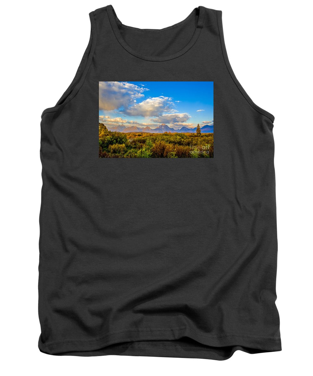 Stock Tank Top featuring the photograph Grand Teton Fall by Thomas Levine