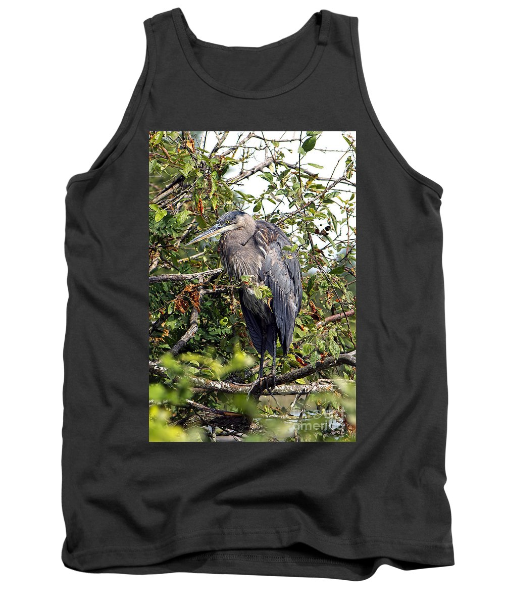 Great Blue Heron Tank Top featuring the photograph Great Blue Heron In A Tree by Sharon Talson