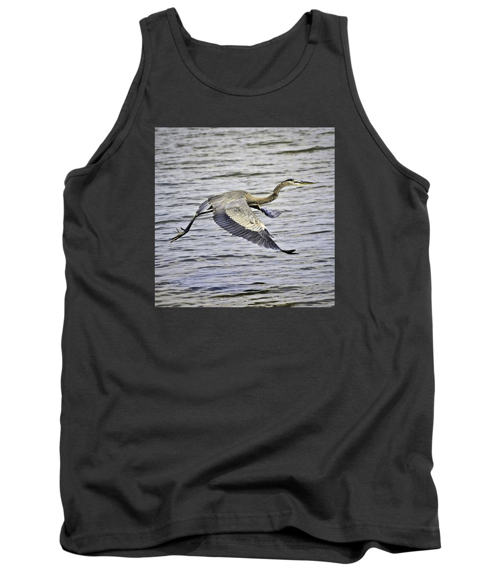 Birds Tank Top featuring the photograph Great Blue Heron In Flight by Shutter Click Photography
