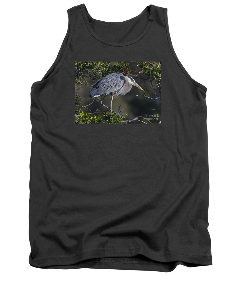 Great Blue Heron Tank Top featuring the photograph Great Blue by Richard Reinders