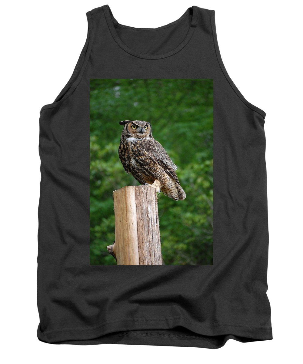 Raptor Tank Top featuring the photograph Great Horned Owl by Robert Meanor