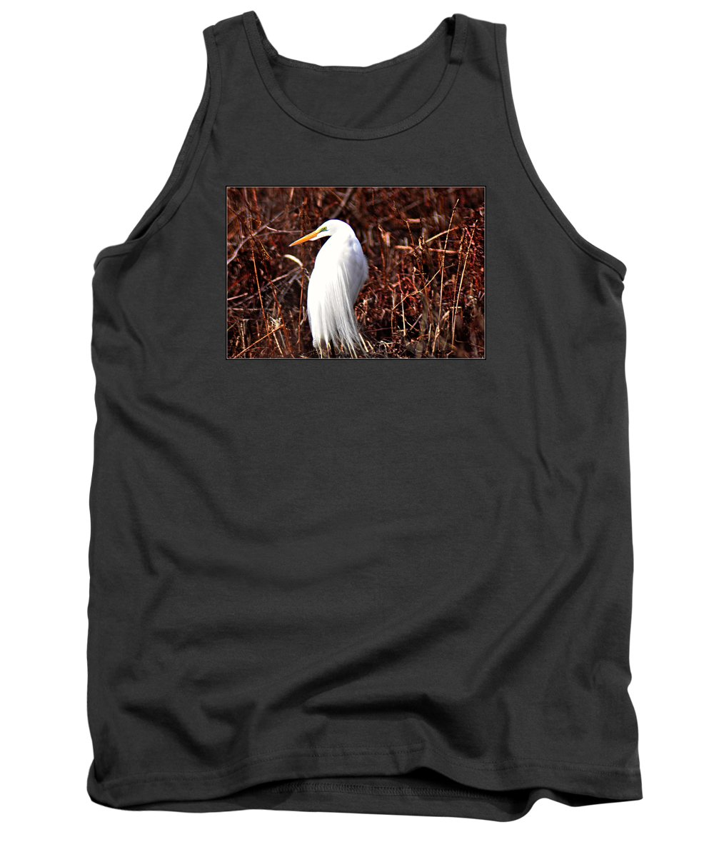 Great Egret Tank Top featuring the photograph Great Plumage by Darin Bokeno