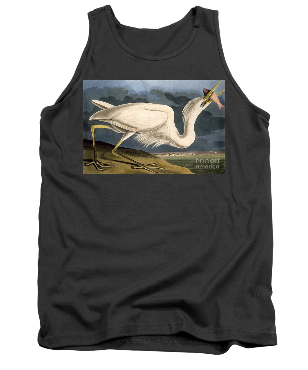 Great White Heron Tank Top featuring the drawing Great White Heron by John James Audubon