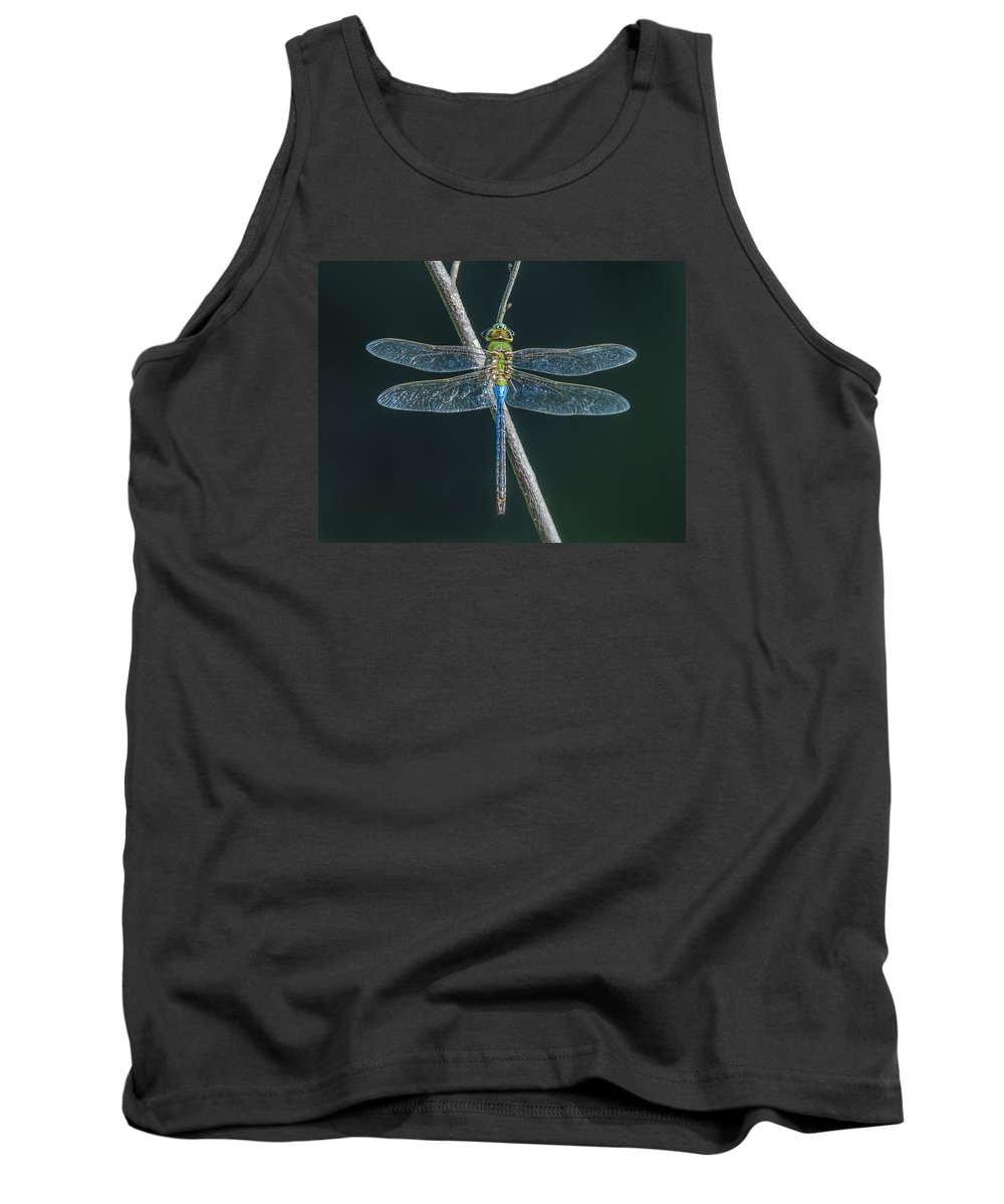 Dragonfly Tank Top featuring the photograph Green And Blue Dragonfly by Sue Matsunaga