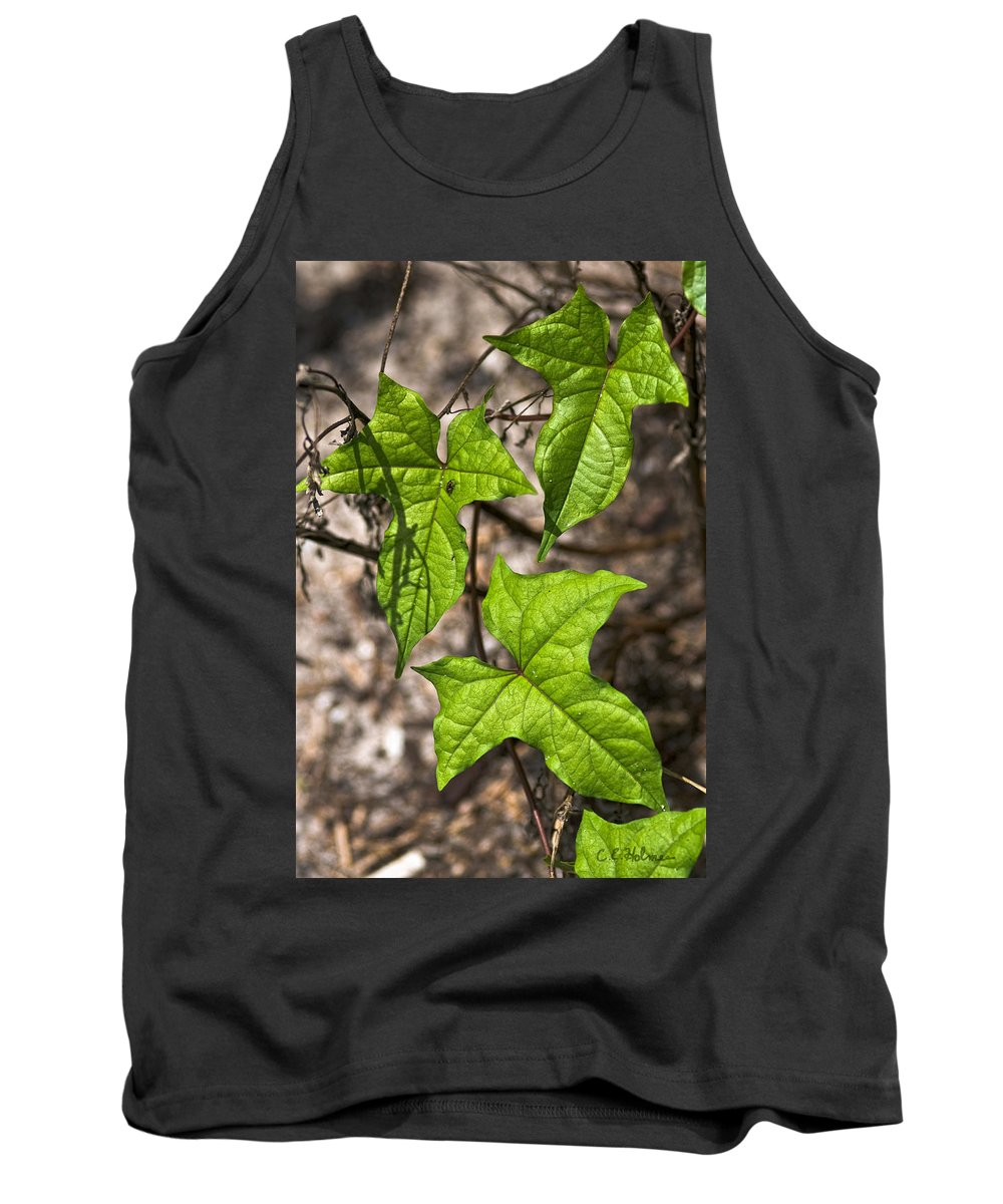Green Tank Top featuring the photograph Green Arrowheads by Christopher Holmes