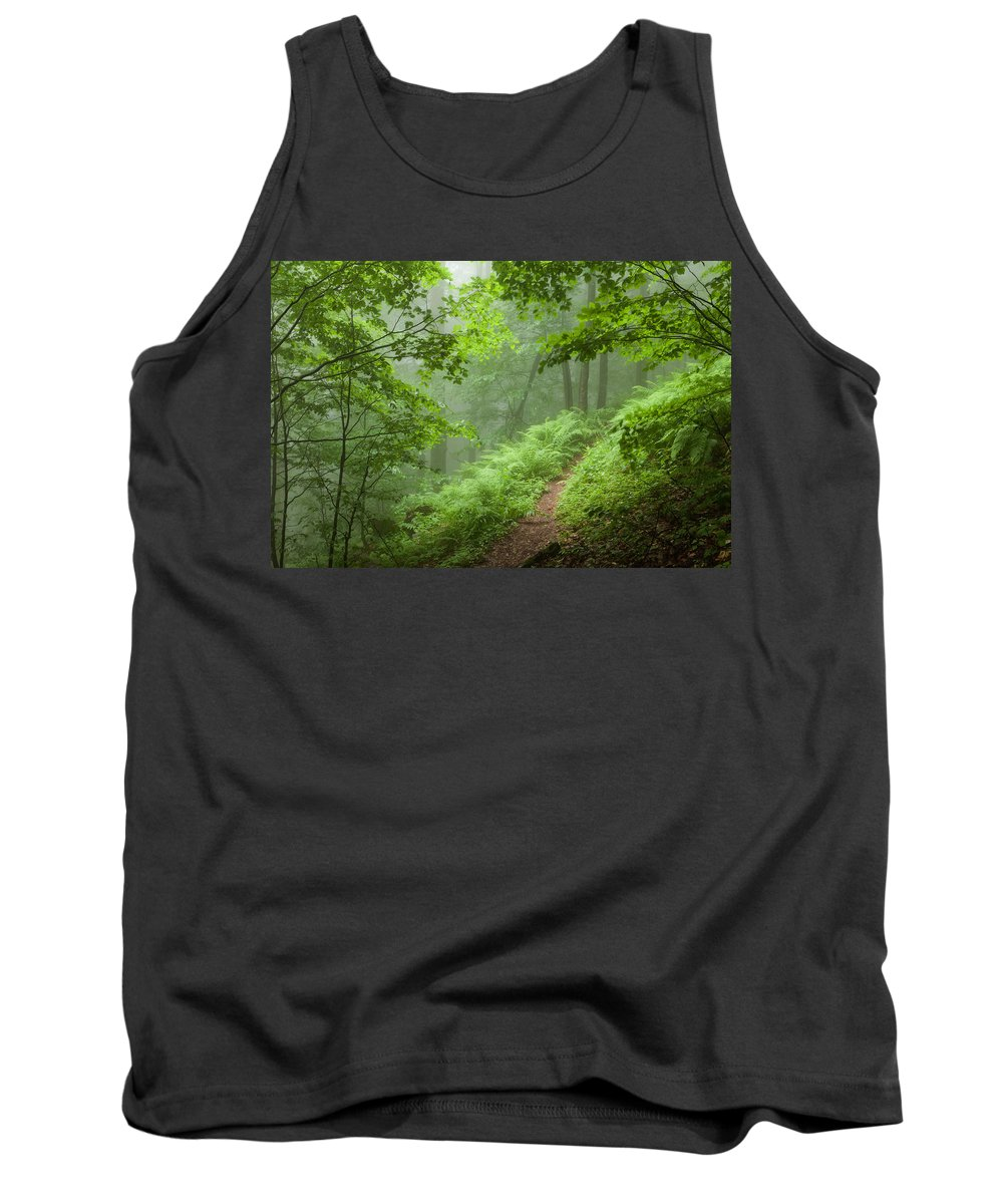 Mountain Tank Top featuring the photograph Green Forest by Evgeni Dinev