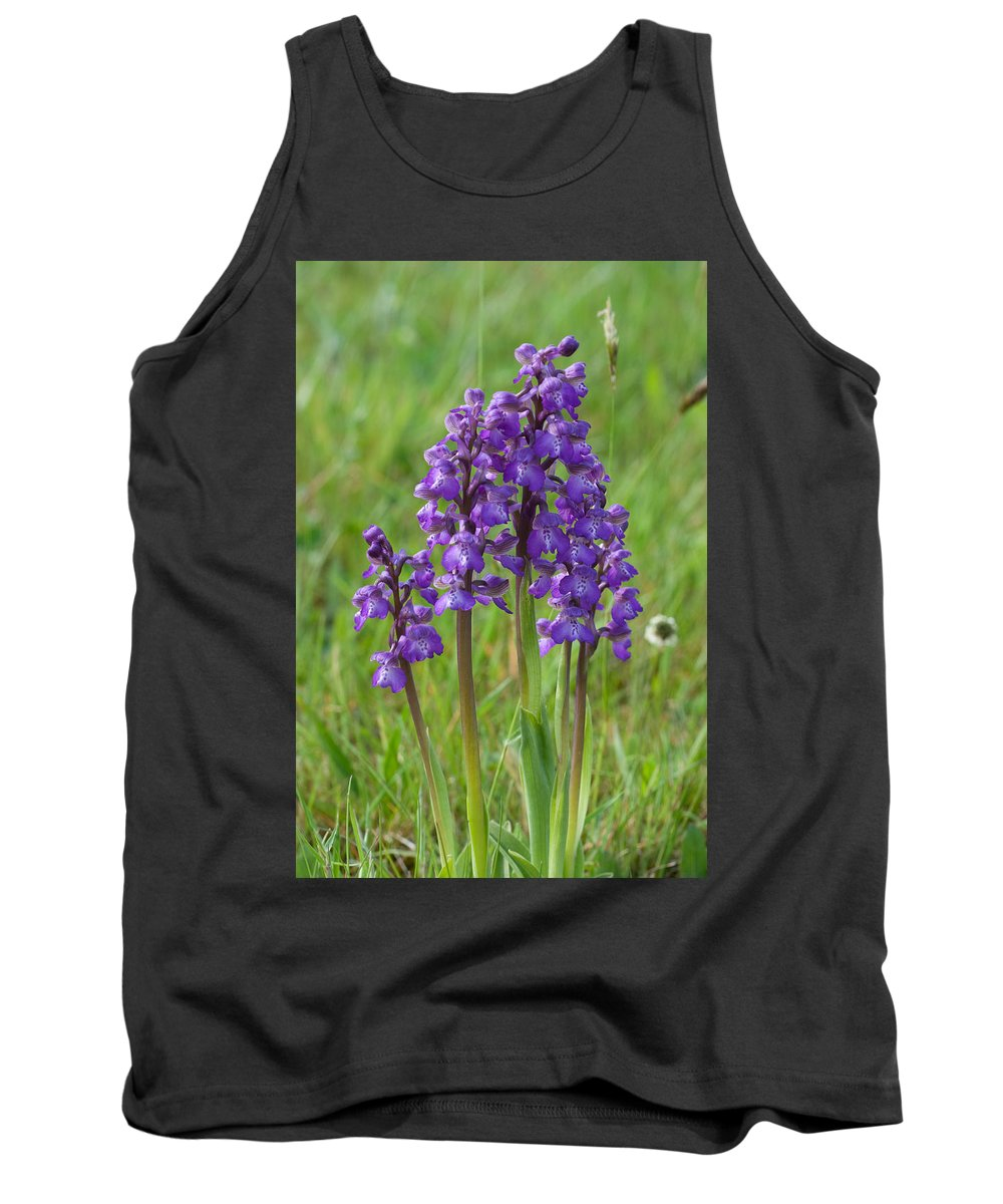 Orchid.flower Tank Top featuring the photograph Green-winged Orchids by Bob Kemp