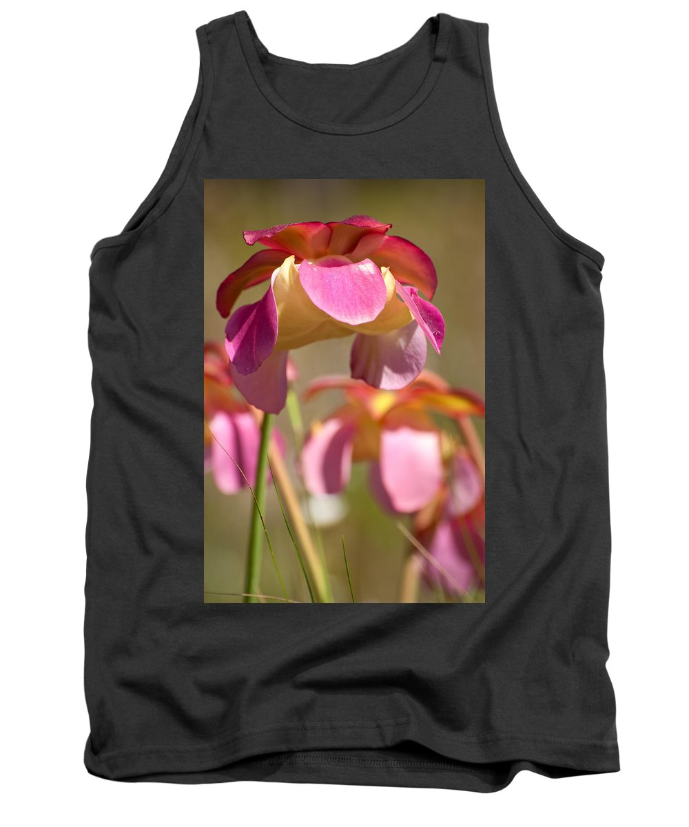 Pitcher Tank Top featuring the photograph Gulf Purple Pitcher Plant by Rich Leighton