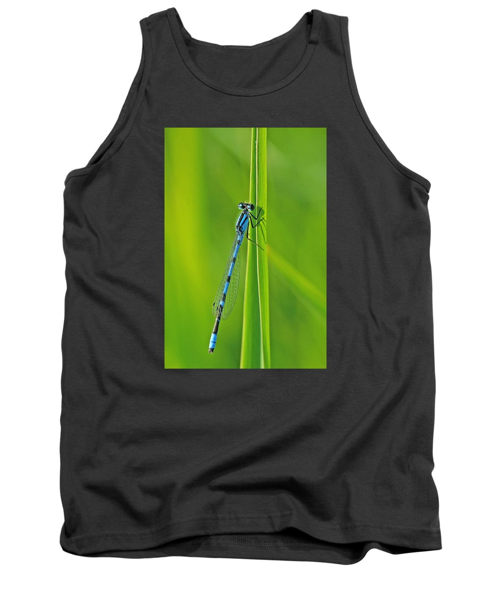 Damselfly Tank Top featuring the photograph Hagens Bluet by Bill Morgenstern