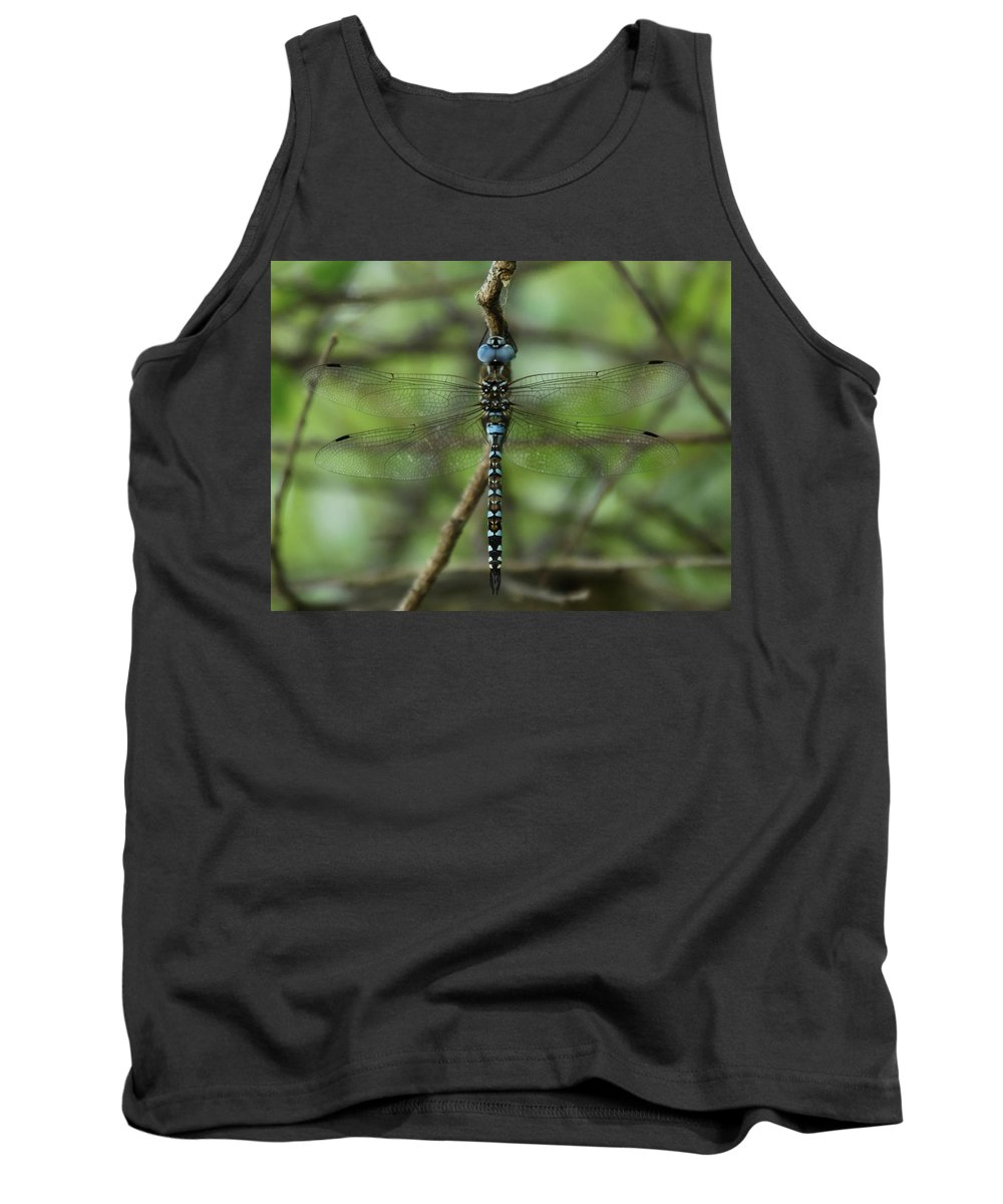 Dragon Tank Top featuring the photograph Hang Out by Donna Blackhall