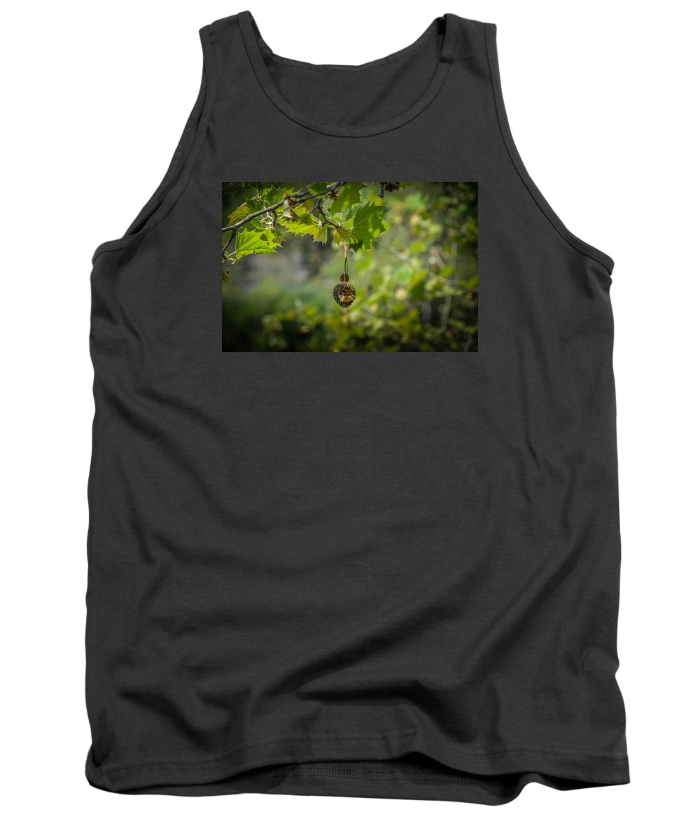 Hanging Tank Top featuring the photograph Hanging Around by Timothy Hudson