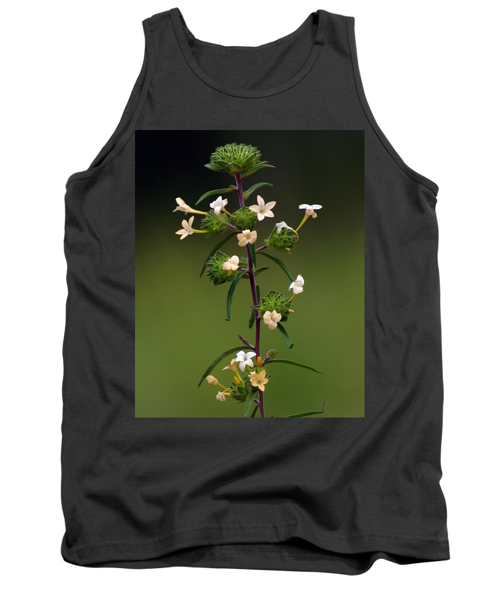 Nature Tank Top featuring the photograph Happy Flowers by Ben Upham III