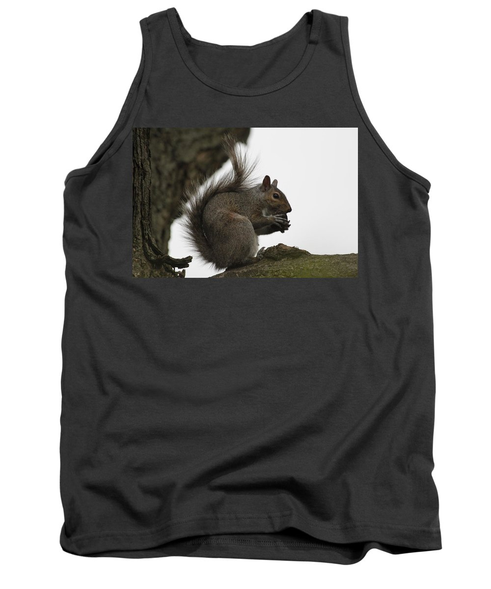 Squirrel Tank Top featuring the photograph Happy Squirrel by Lauri Novak
