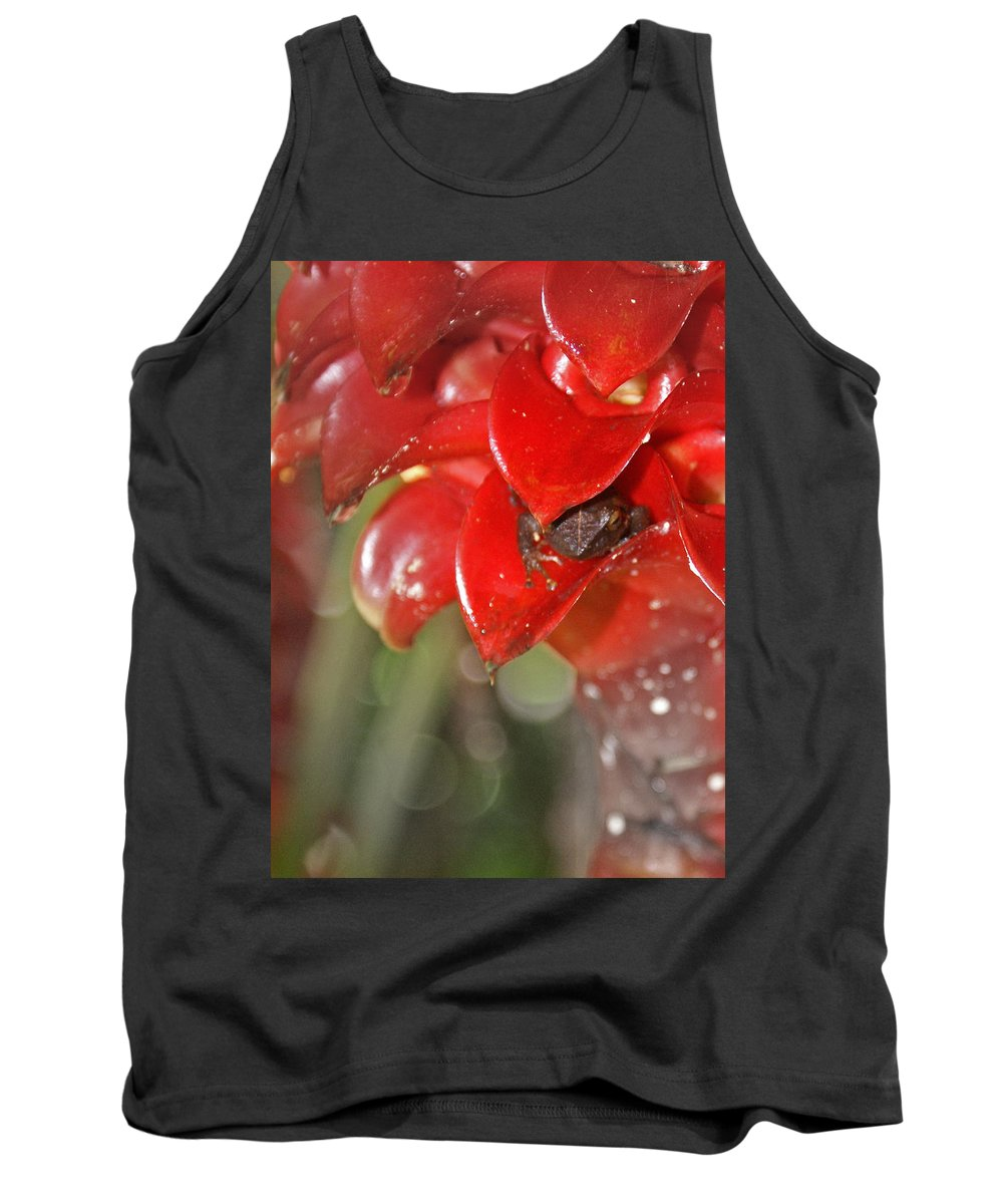 Frog Tank Top featuring the digital art Hawaiian Frog by Heather Coen