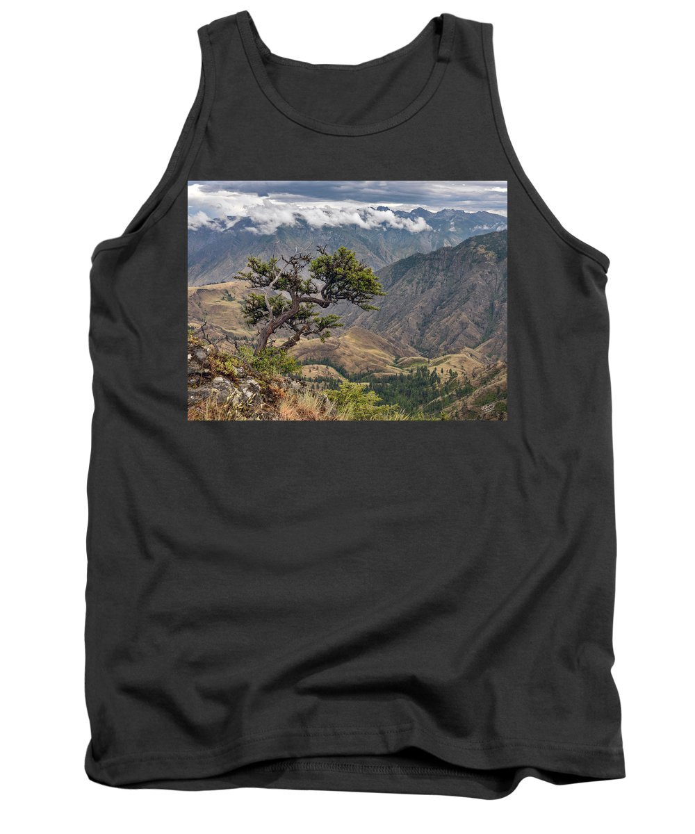 Altitude Tank Top featuring the photograph Hells Canyon by Leland D Howard