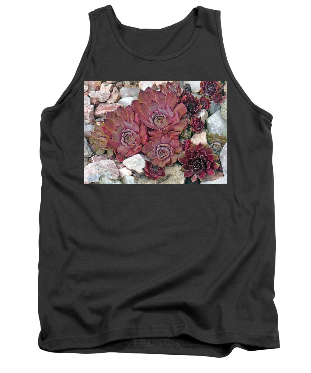 Landscape Tank Top featuring the photograph Hens And Chickens by Steve Karol