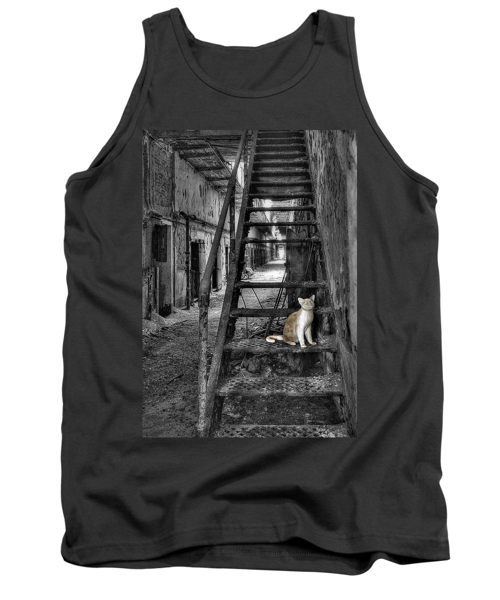 Abandoned Tank Top featuring the photograph Here Kitty Kitty Kitty... by Evelina Kremsdorf