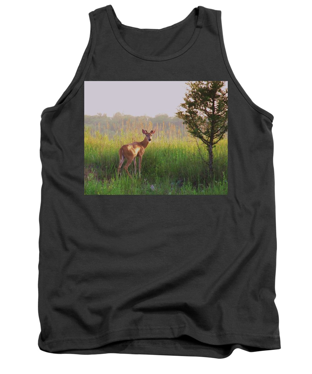 Deer Photograph Tank Top featuring the photograph Hesitation by Marilyn Smith