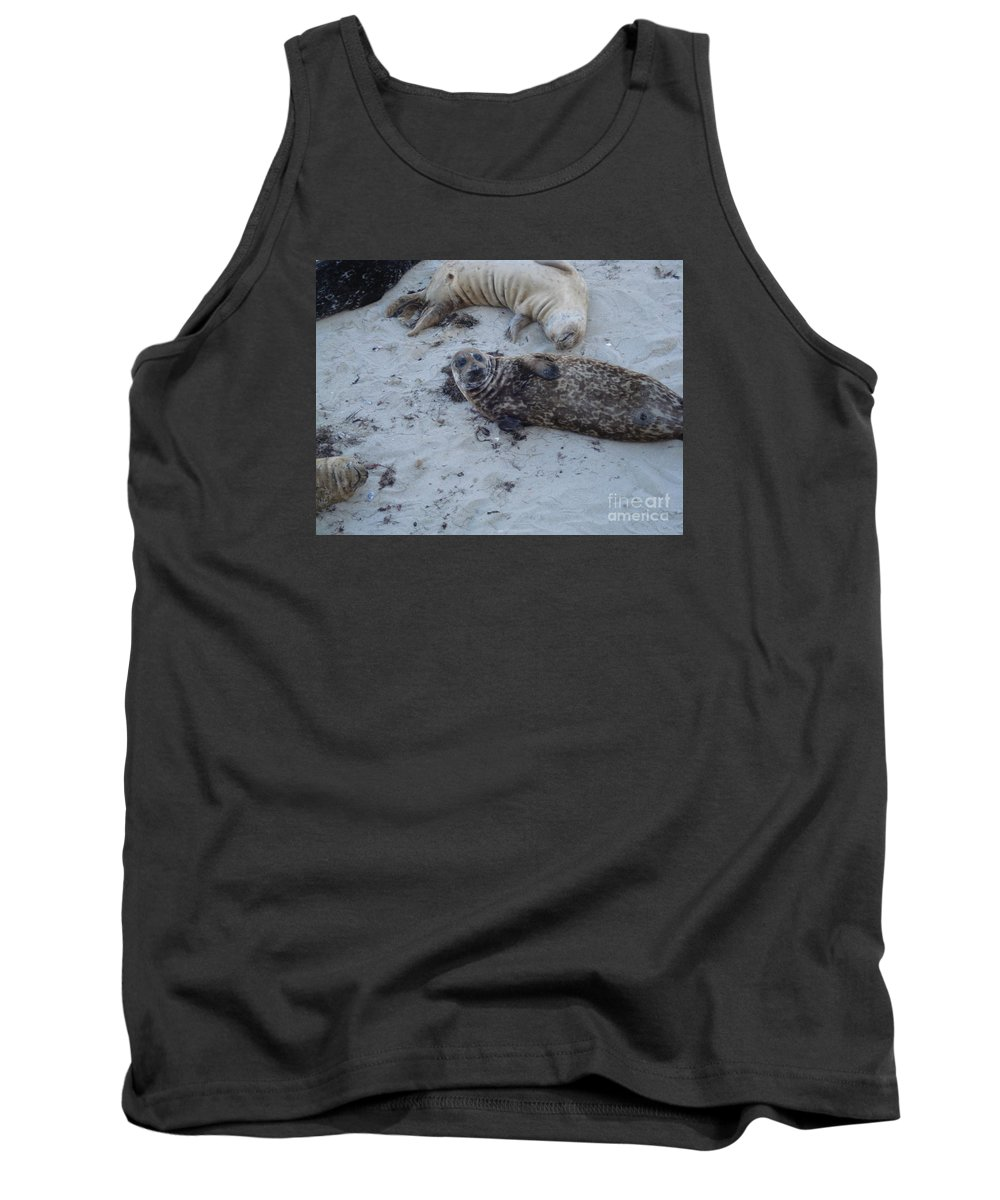 Seals Tank Top featuring the photograph Hey Guys by Madilyn Fox