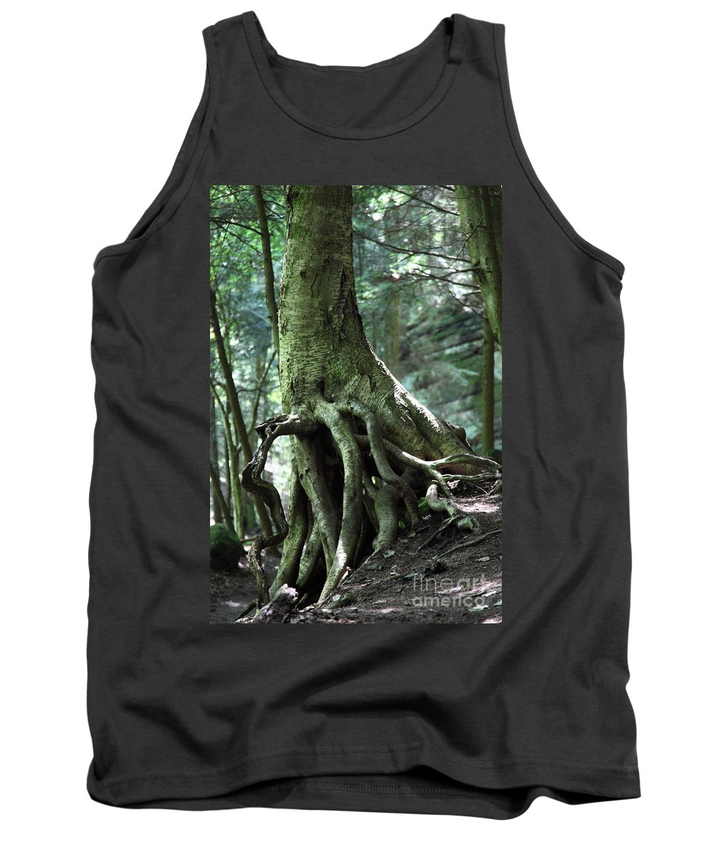 Trees Tank Top featuring the photograph Hold On To Me. by Amanda Barcon