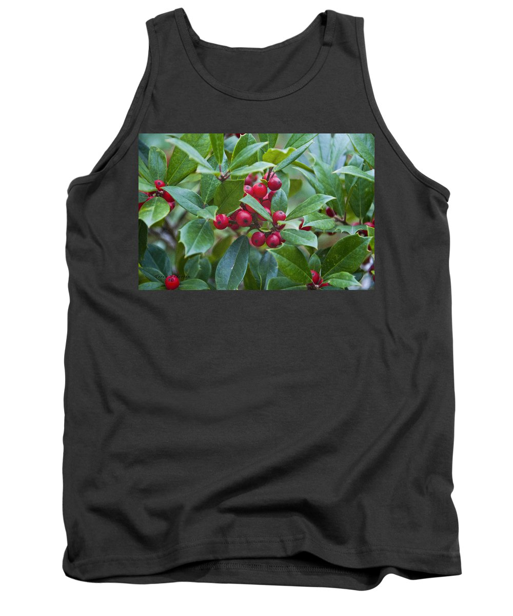 Holly Berries Tank Top featuring the photograph Holly Berries by Terry Anderson