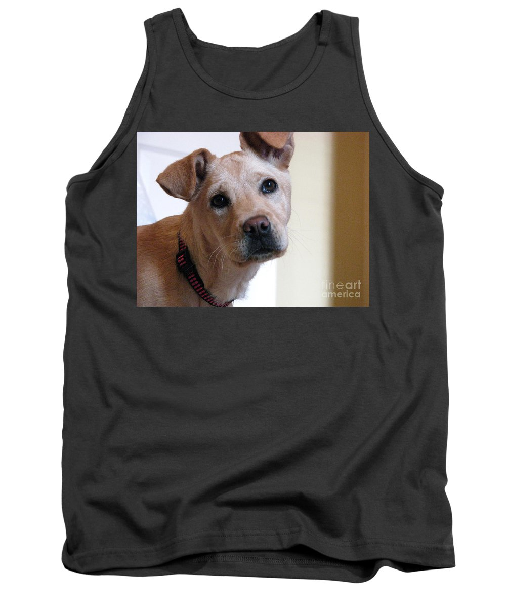 Dog Tank Top featuring the photograph Honey by Amanda Barcon