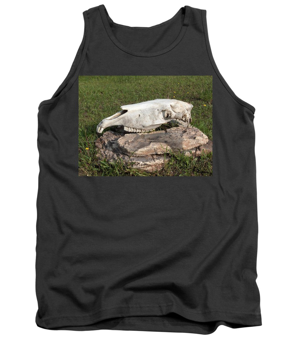 Horse Horses Spiritual Remembering Skull Spirits Ranch Herd Animals Tank Top featuring the photograph Horse Spirit 1 by Andrea Lawrence