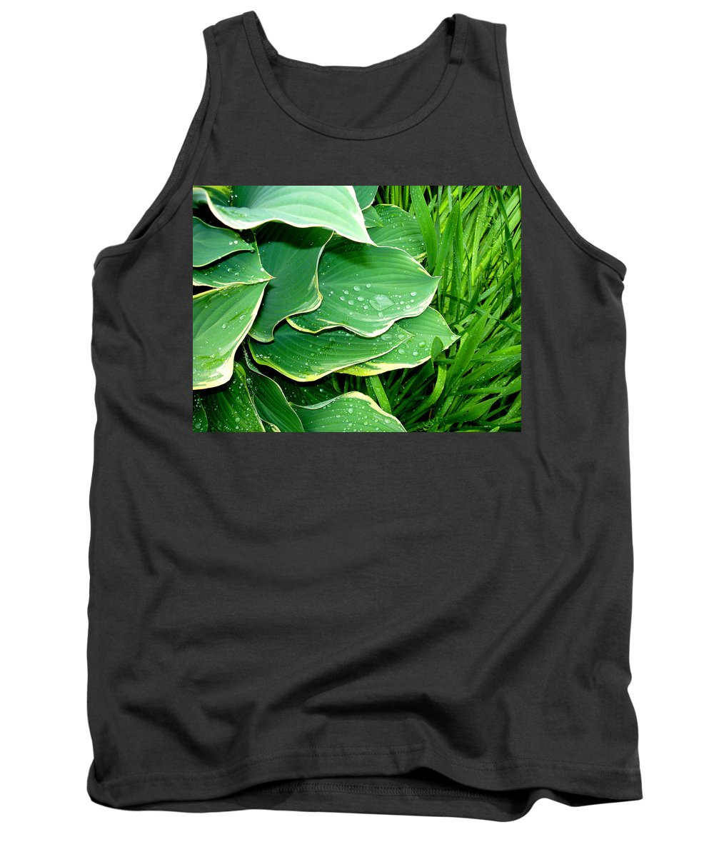 Hostas Tank Top featuring the photograph Hosta Leaves And Waterdrops by Nancy Mueller