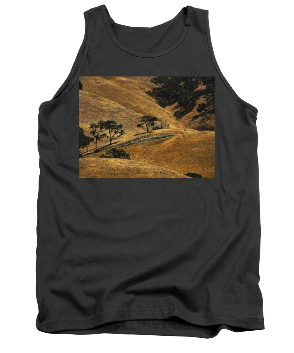 California Tank Top featuring the photograph Hot Days by Karen W Meyer