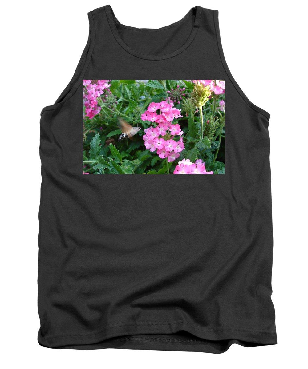 Flower Tank Top featuring the photograph Hummingbird Moth On Pink Verbena by Susan Baker