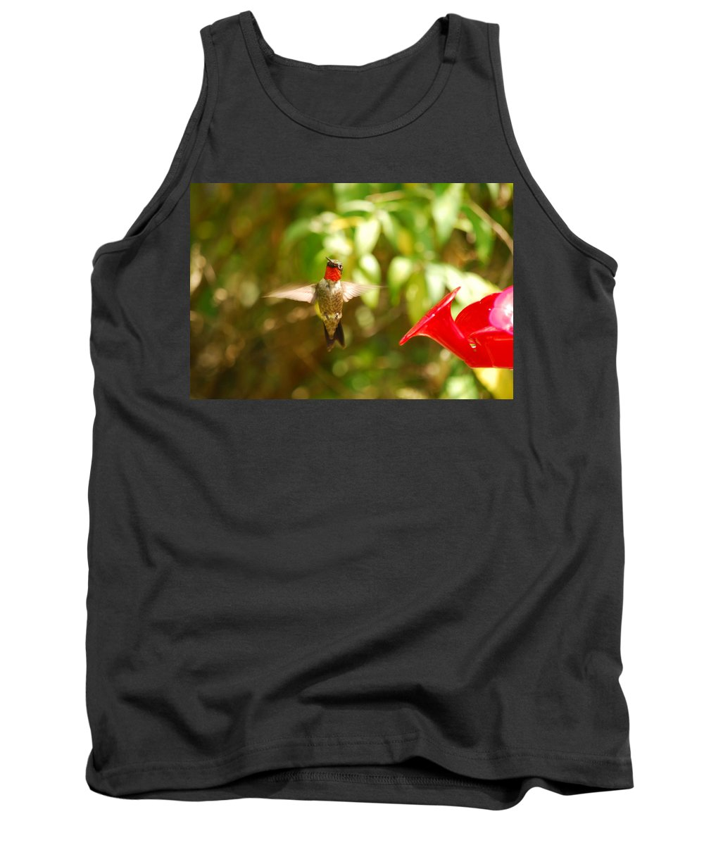 Hummingbird Tank Top featuring the photograph I Can Fly by Lori Tambakis