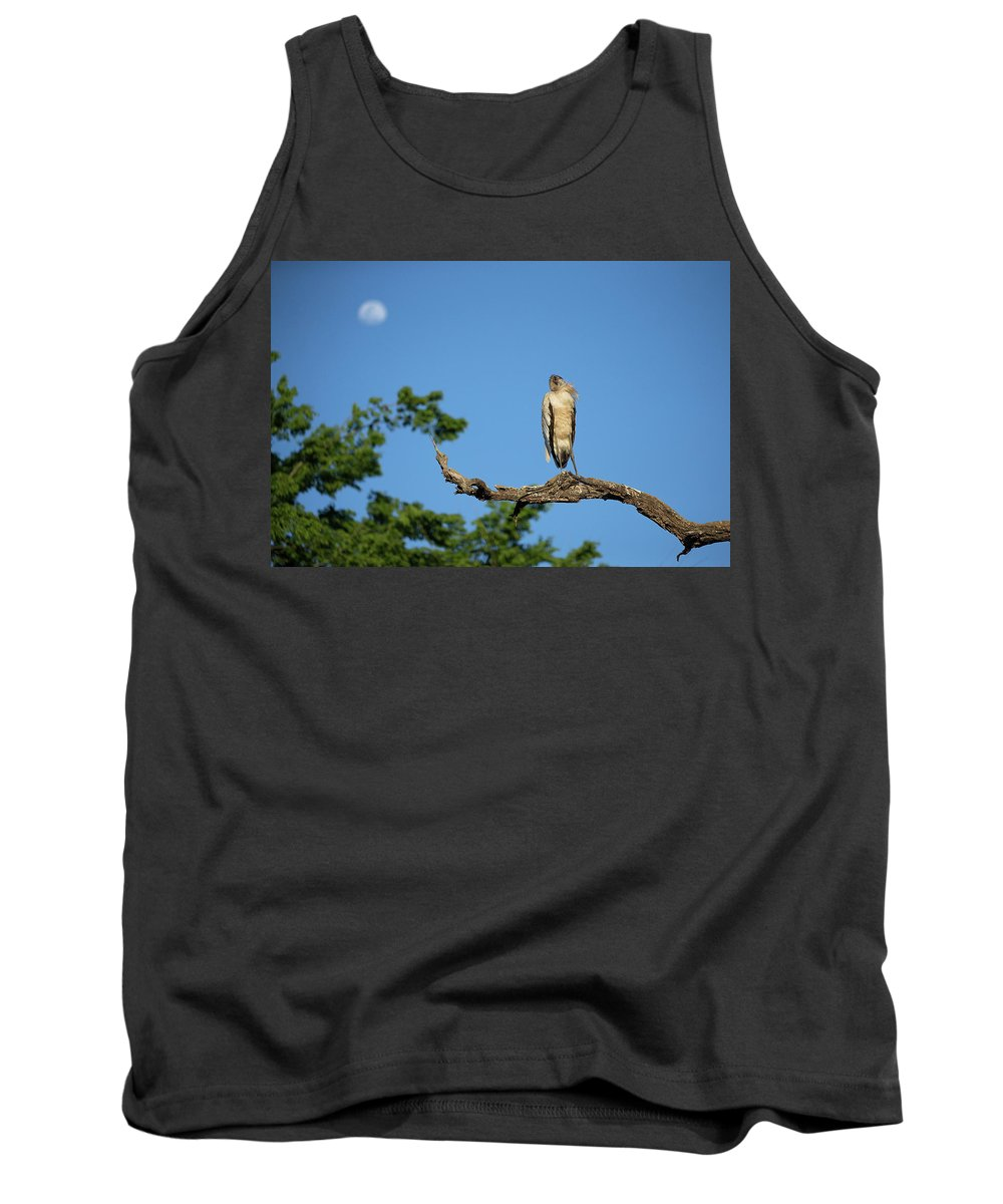 Stork Tank Top featuring the photograph I See The Moon by Eilish Palmer