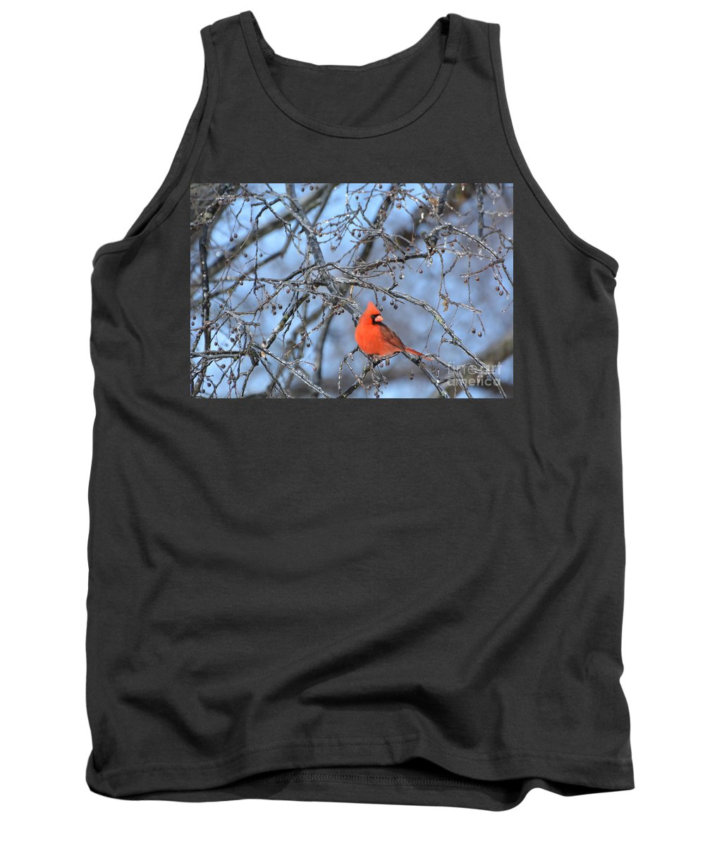 Red Bird Tank Top featuring the photograph Icy Red by Vicky Tubb