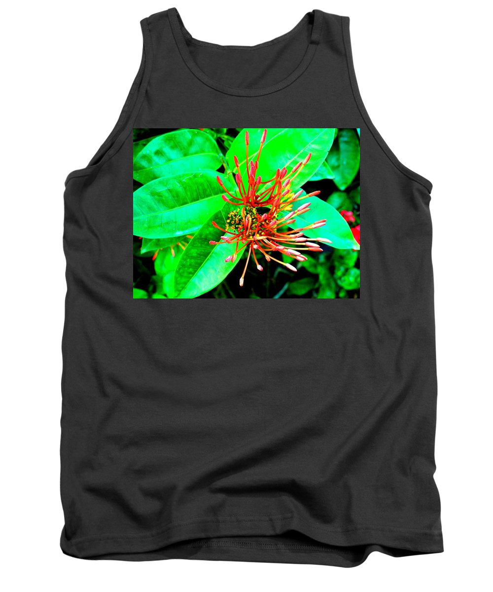 Flower Tank Top featuring the photograph In My Garden by Ian MacDonald