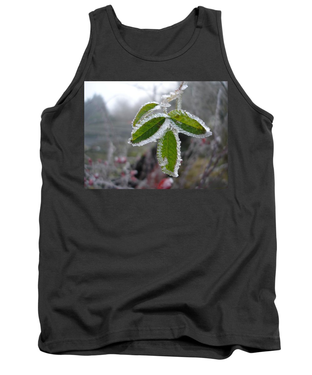 Winter Tank Top featuring the photograph In The Winter Sunlight by Susan Baker