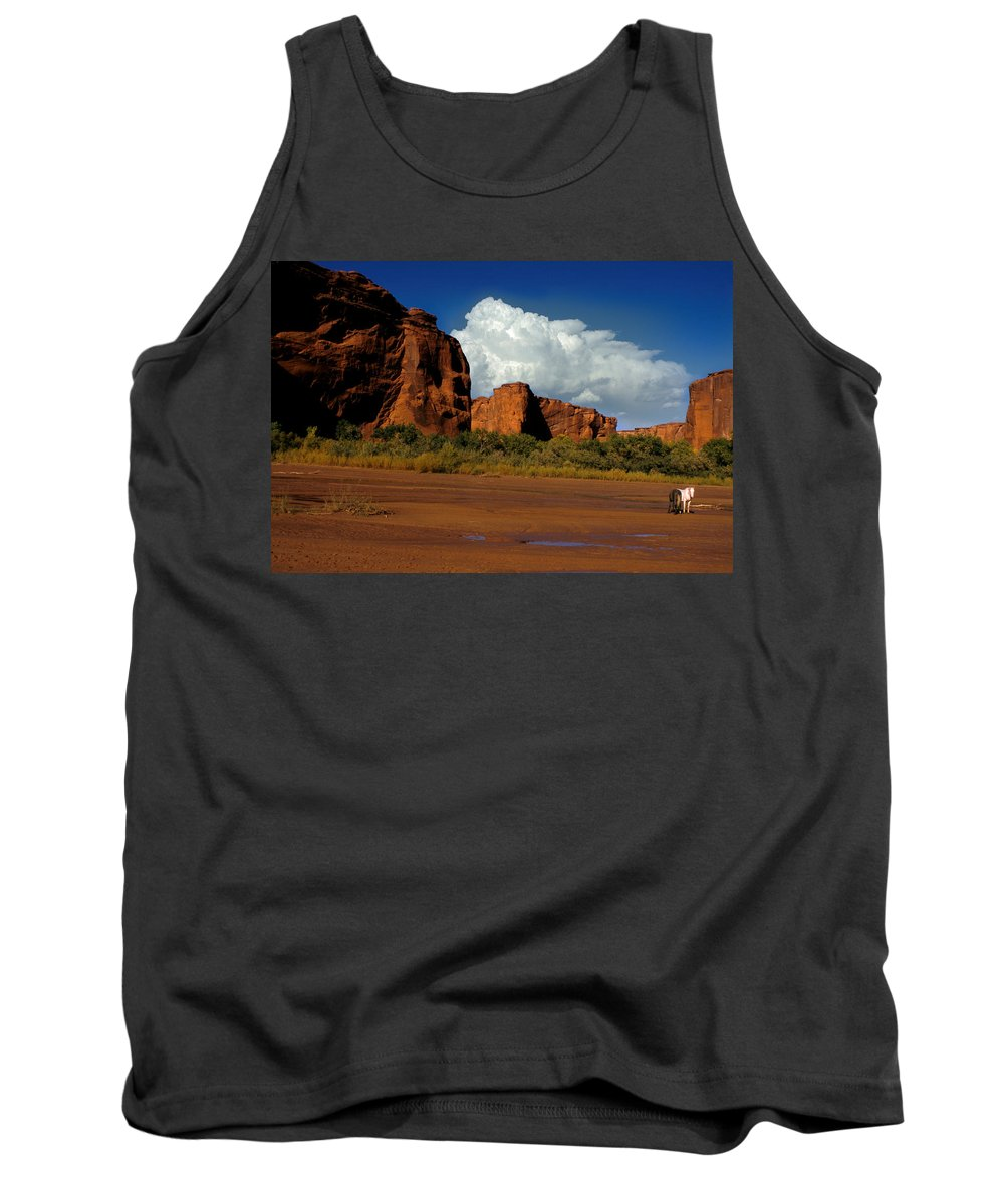 Horses Tank Top featuring the photograph Indian Ponies in the Canyon by Jerry McElroy