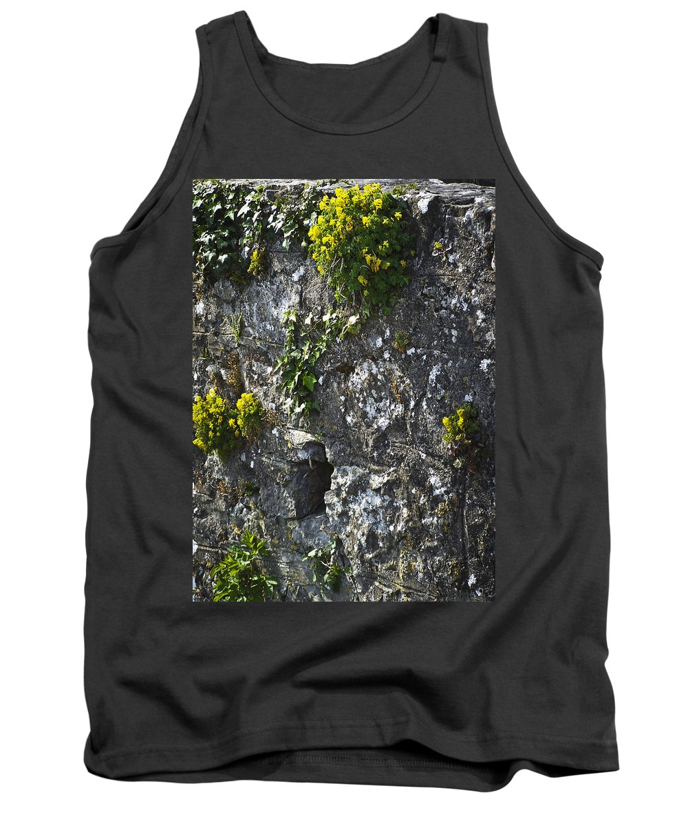 Ireland Tank Top featuring the photograph Irish Stone Flowers by Teresa Mucha