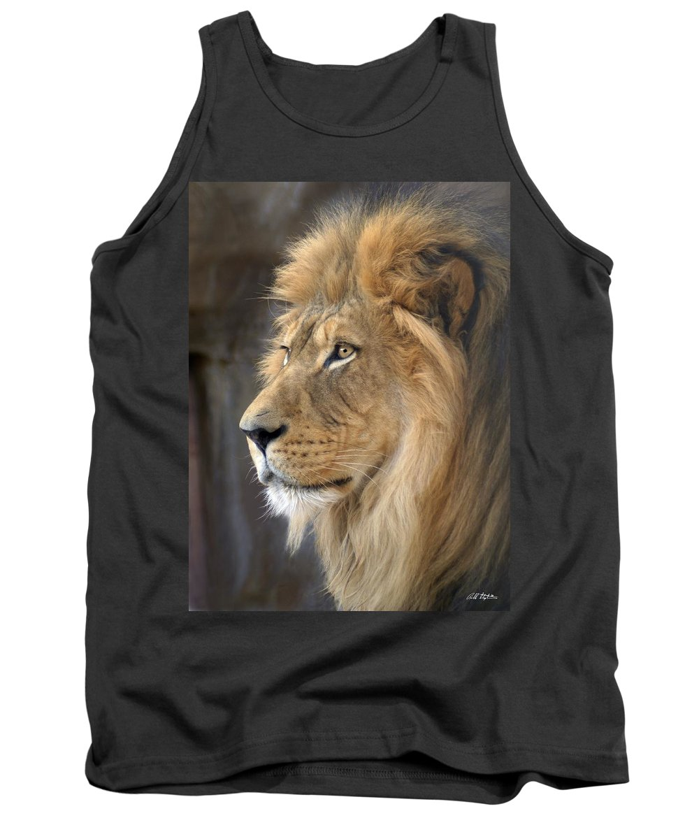 Lions Tank Top featuring the photograph Israel by Bill Stephens